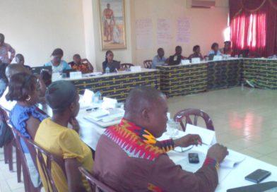 Atelier de réflexion sur le mécanisme de collecte et de documentation de violation des droits de l'enfant